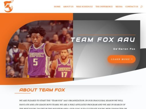 Team Fox AAU – Web Design